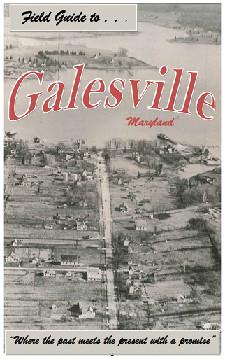Field Guide to Galesville